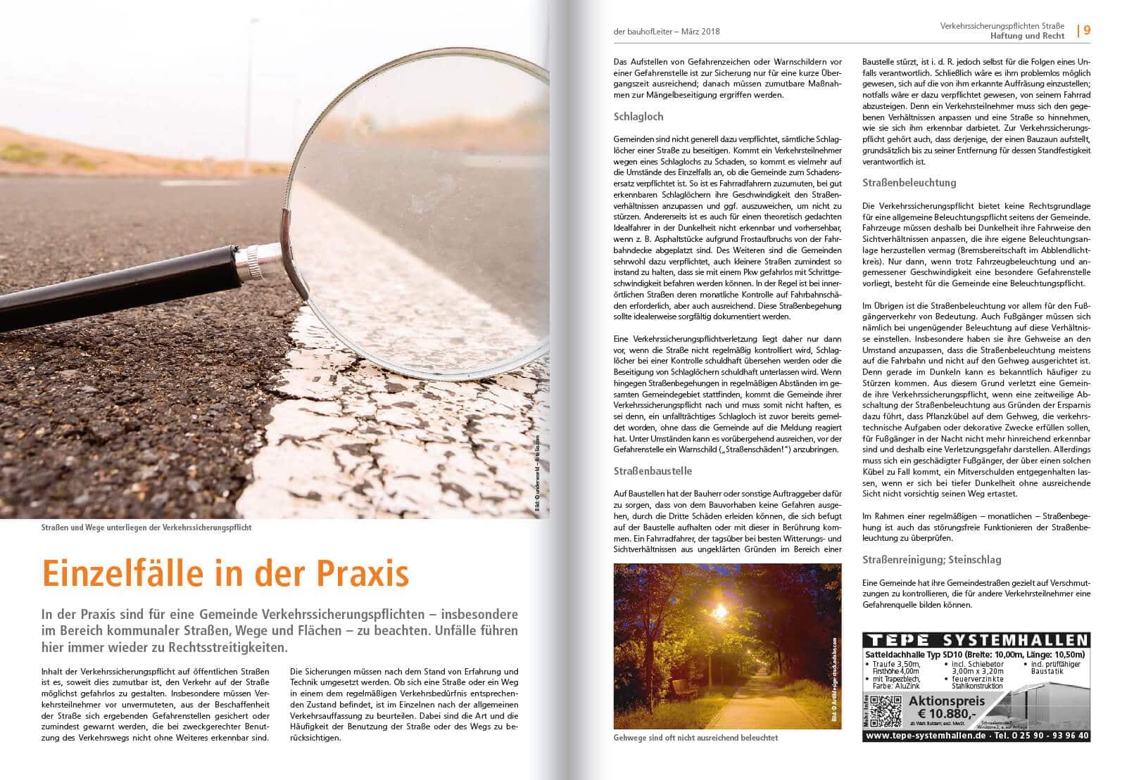 2018-02 Verkehrssicherungspflicht Strassen 1