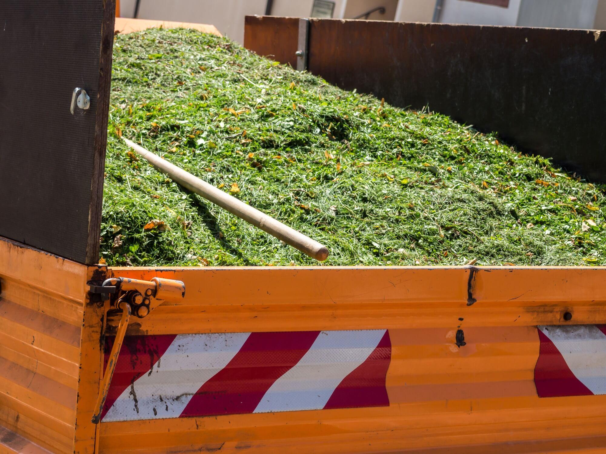 Richtige Entsorgung von Abfällen – Rasenschnitt, Laub und Co.