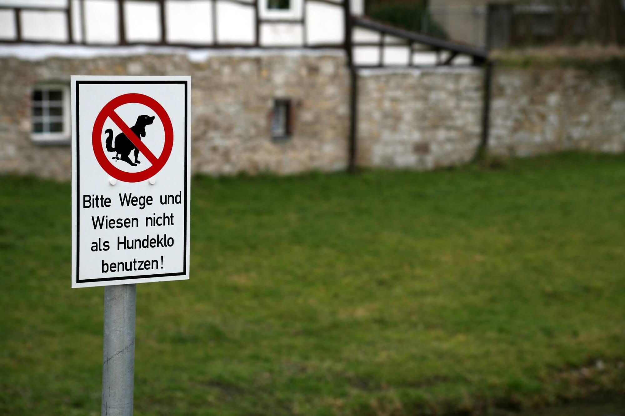 Arbeitsschutz auf Grünanlagen – Hundekot als Gefährdung