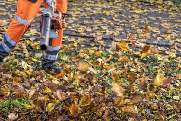 2018-12 Arbeiten der Grünflächenpflege Header