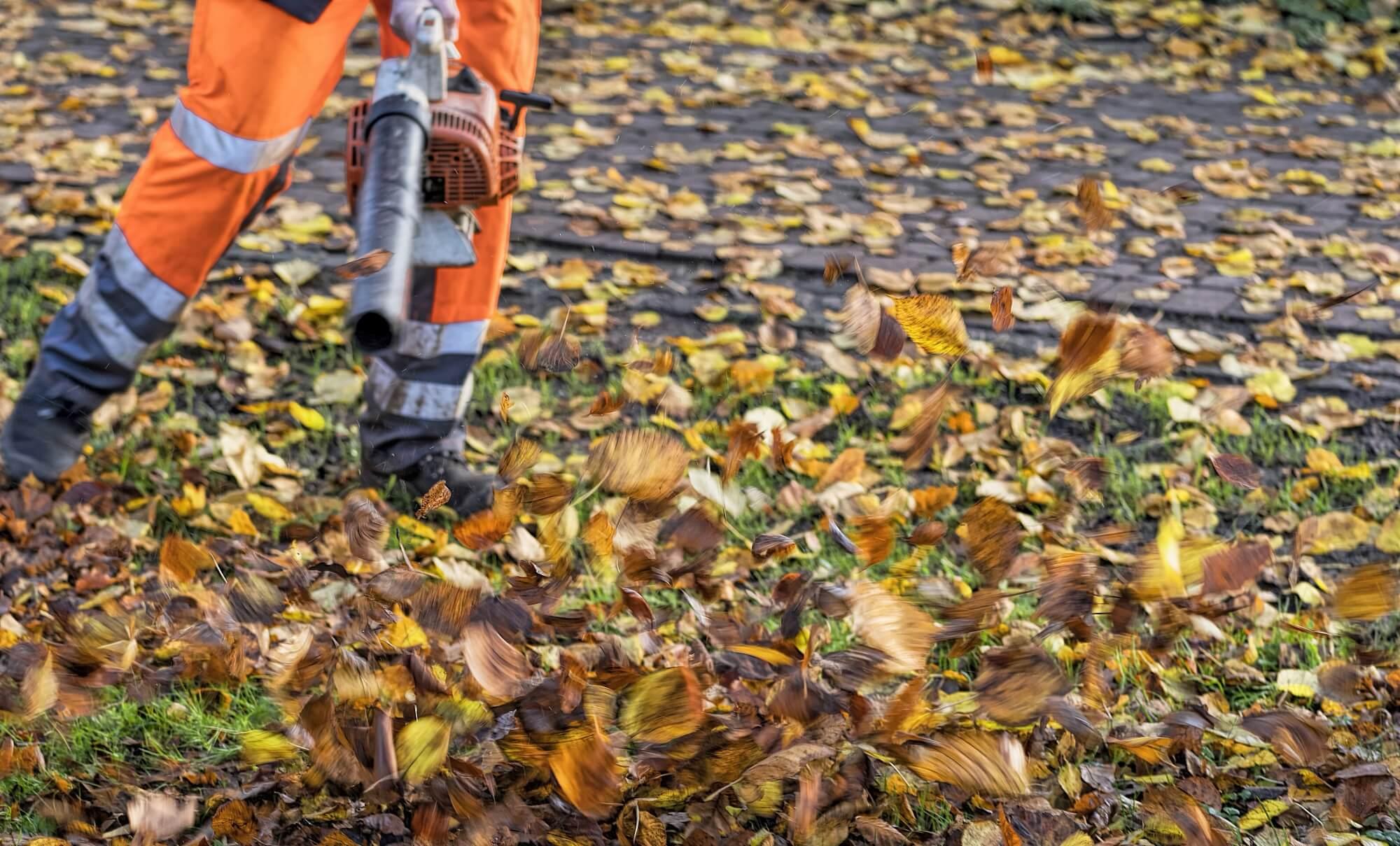 Kosten- und Leistungsrechnung – Arbeiten der Grünflächenpflege