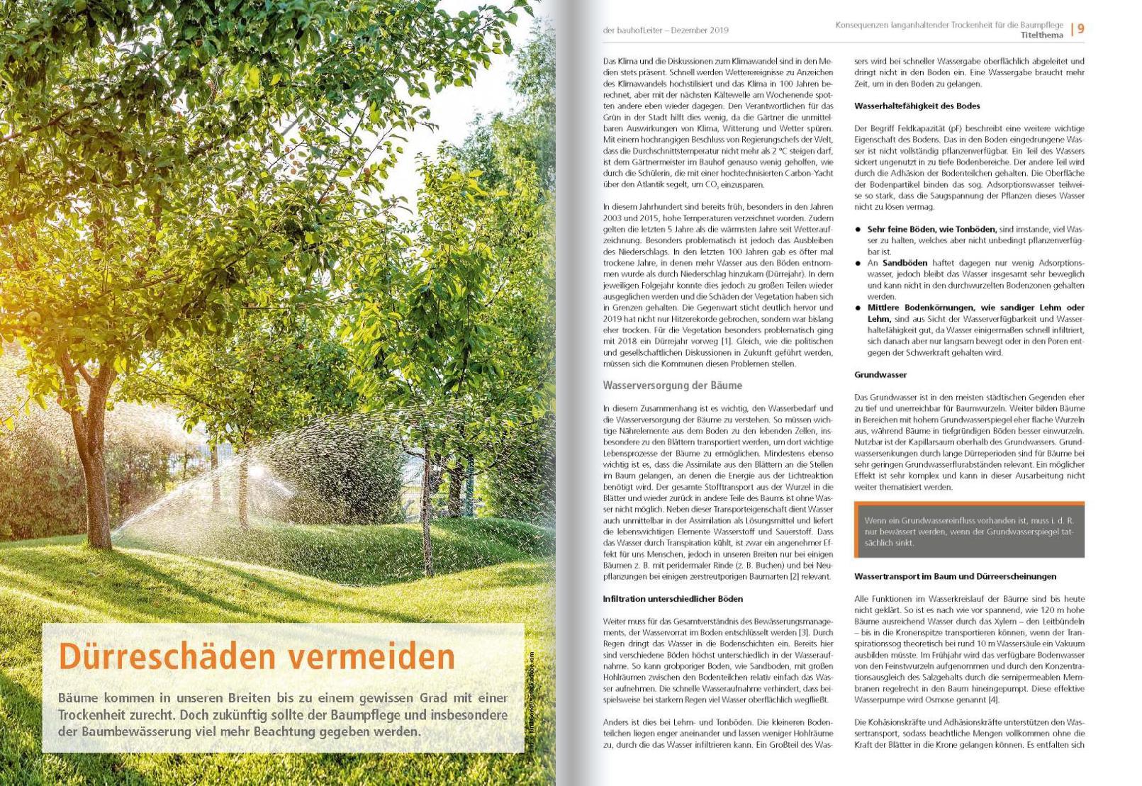 2020-01 Baumpflege 01