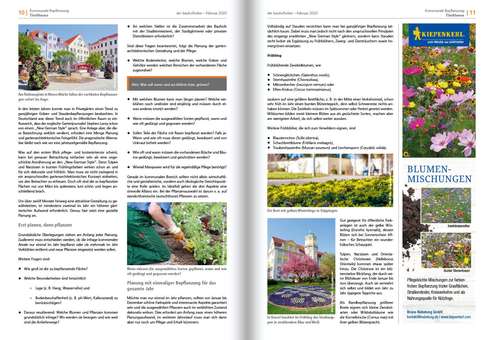 2020-02 Kommunale Bepflanzung 2