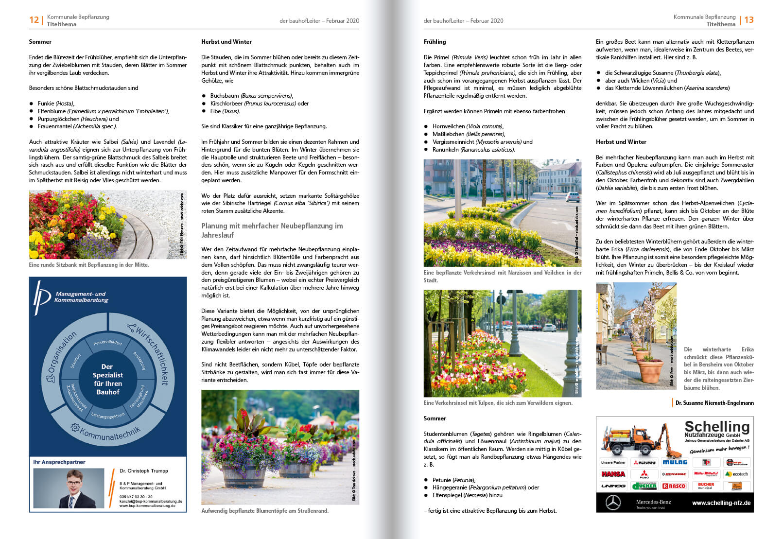 2020-02 Kommunale Bepflanzung 3