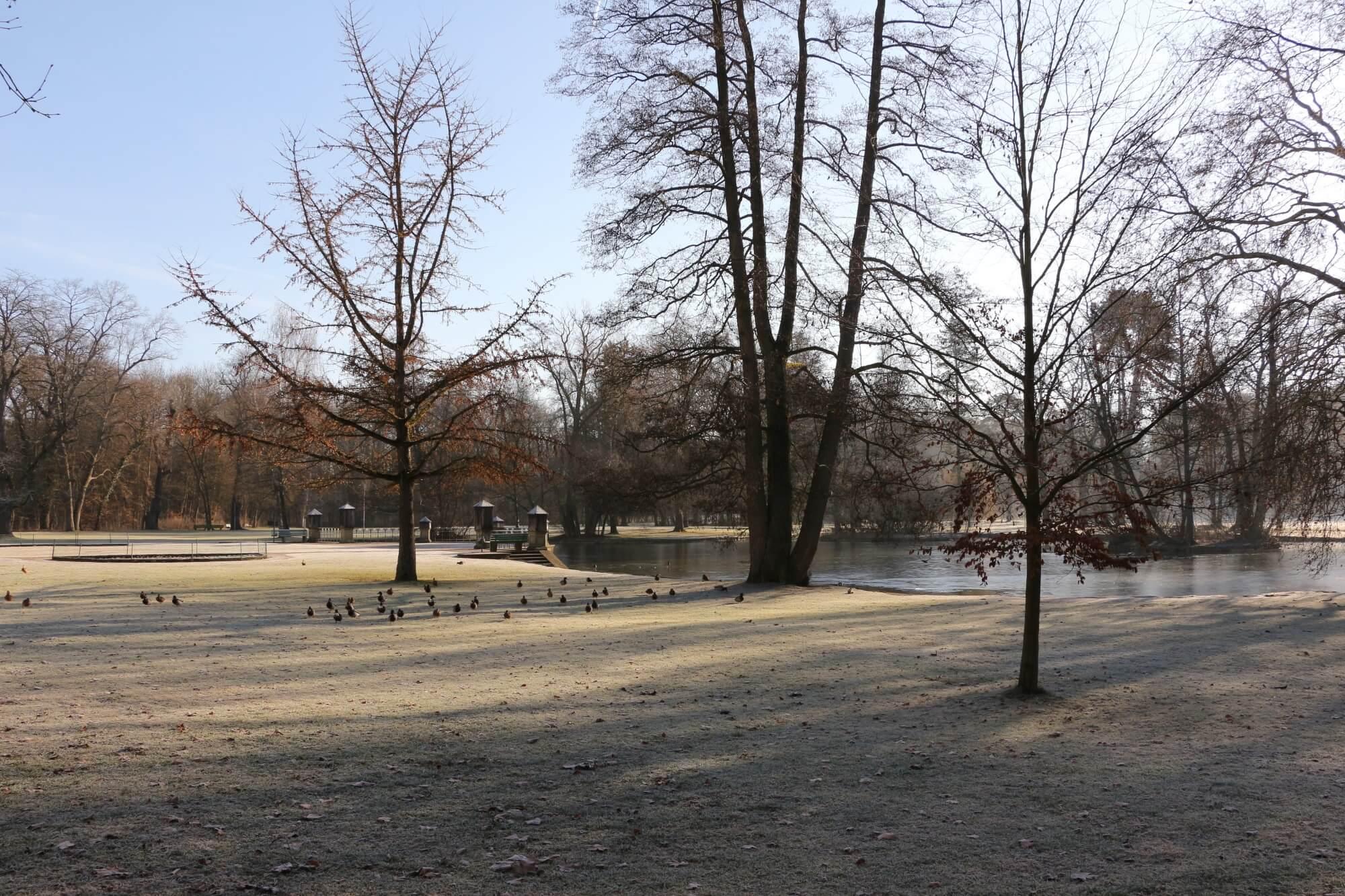 Parkanlage der Gemeinde X